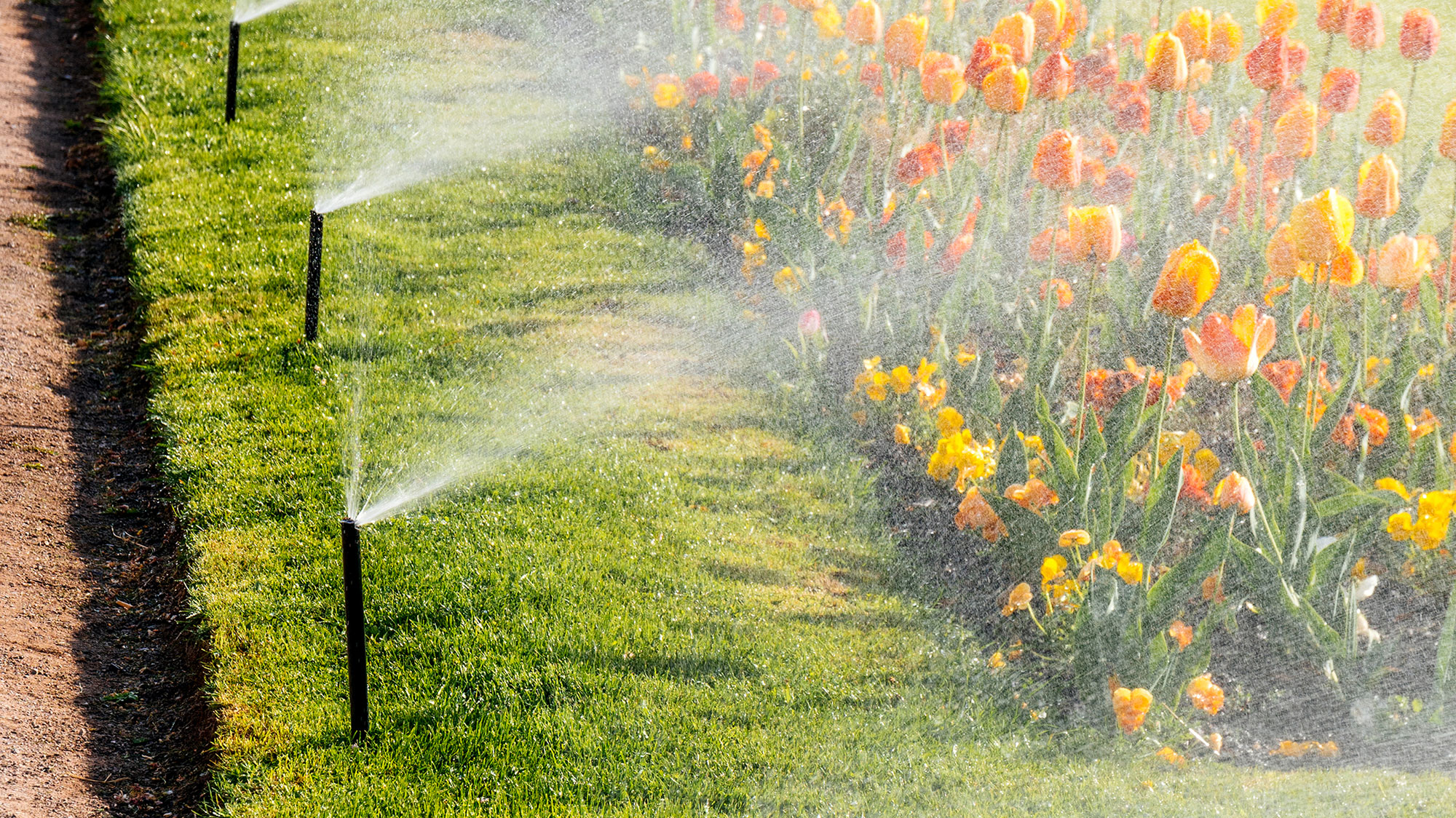 Turn to JR Flores Landscape Services for sprinkler system services.
